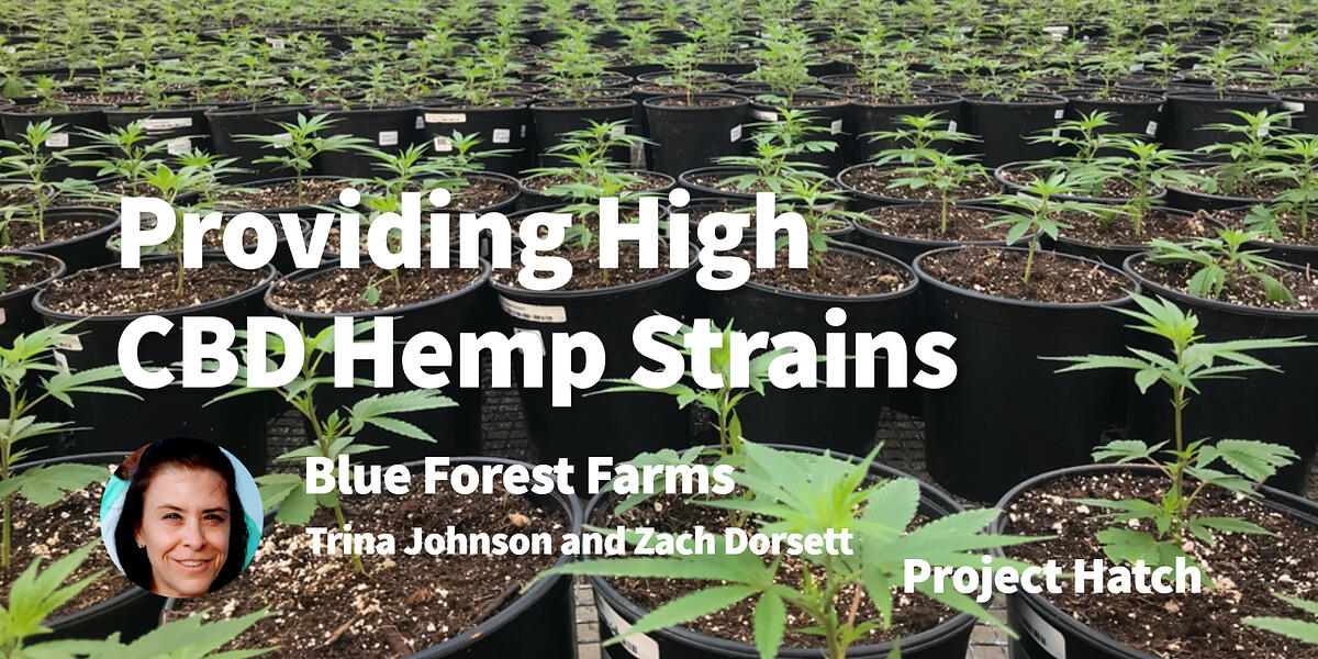 blue-forest-farms-project-hatch